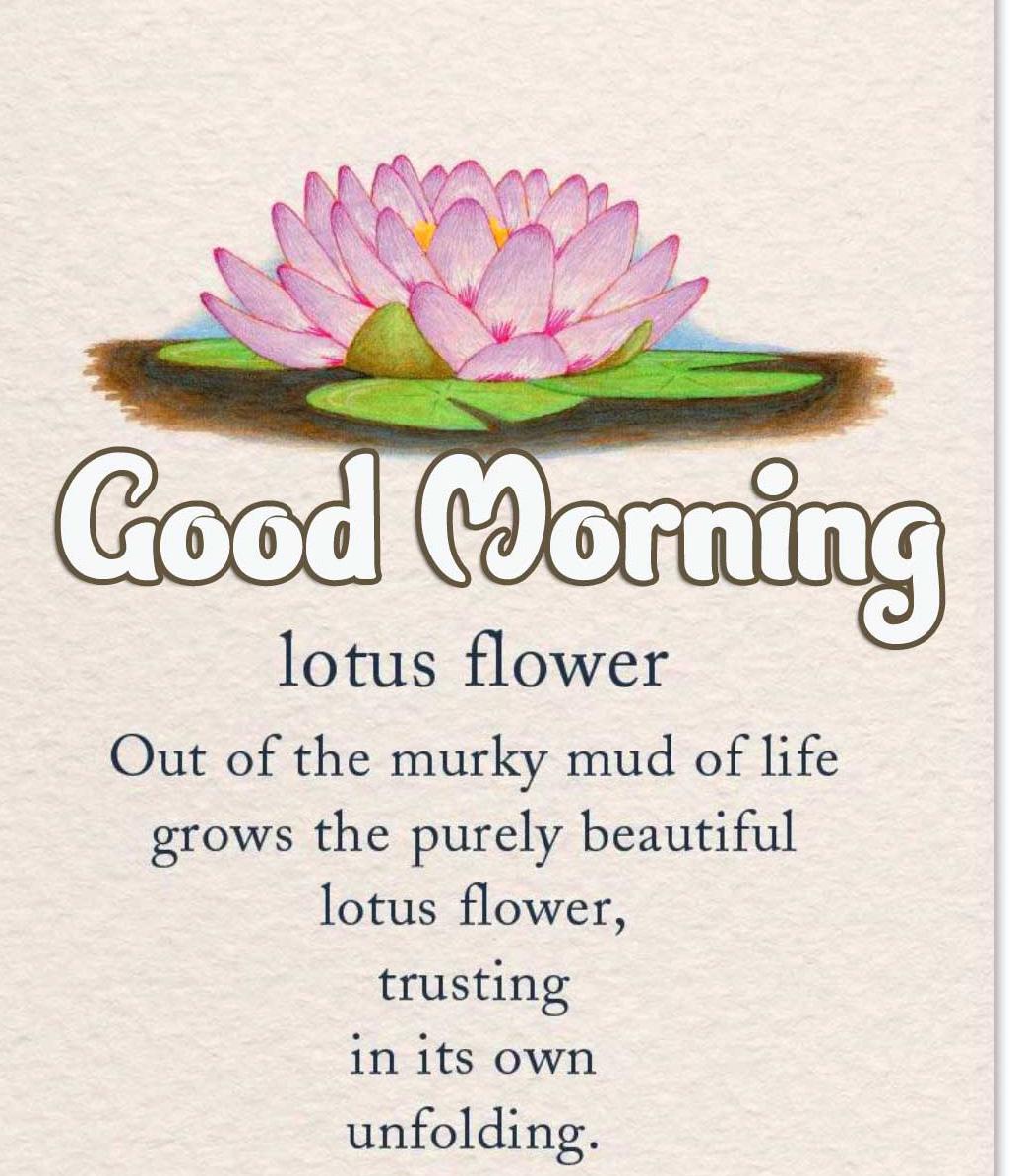 1080p Good Morning Wallpaper Free Download
