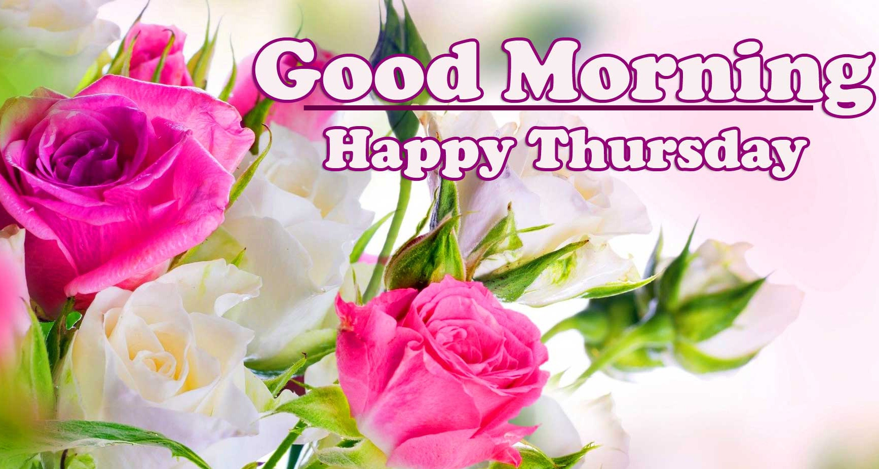 Good Morning Thursday Images Pics Wallpaper Latest Download