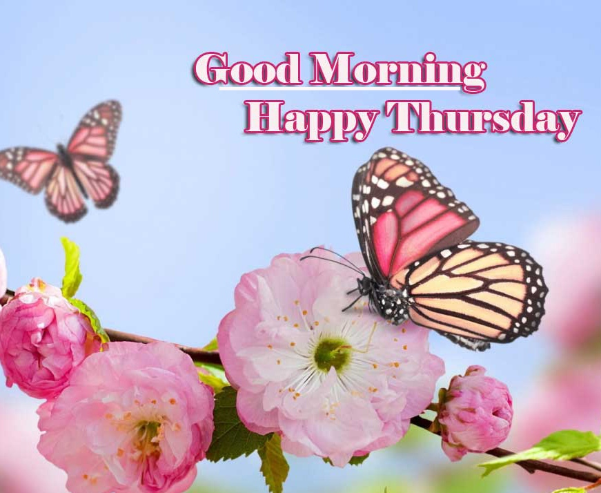 Good Morning Thursday Images Pics Download