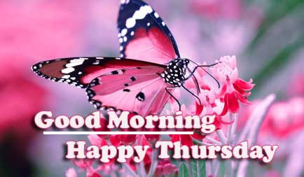Good Morning Thursday Images Pics Free New Download