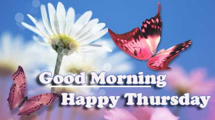 Good Morning Thursday Images Pics Wallpaper Download