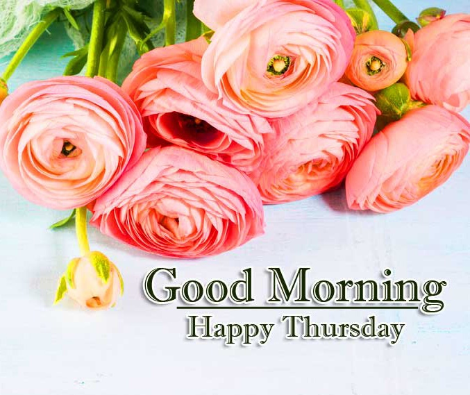 Good Morning Thursday Images Pics Wallpaper Free Download