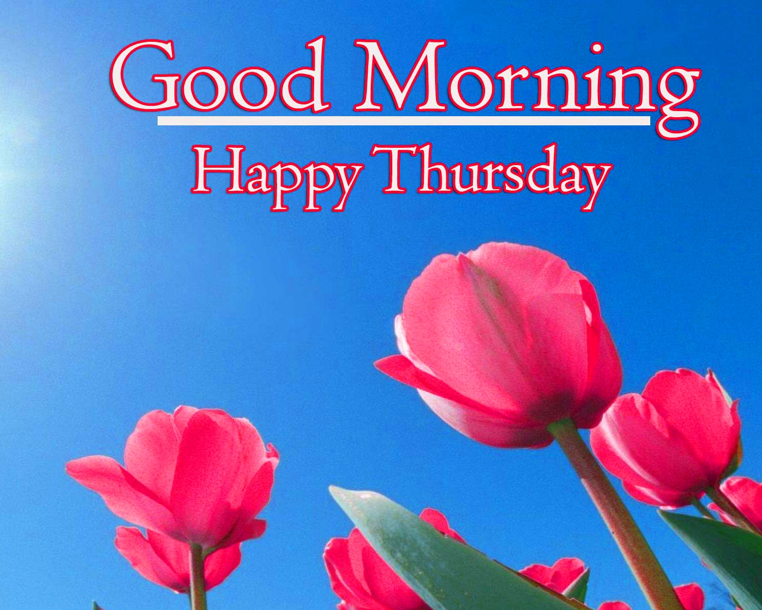 Good Morning Thursday Images Wallpaper New Download