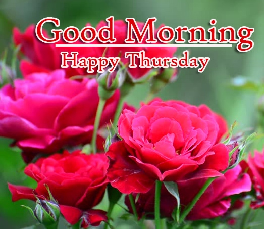 Good Morning Thursday Images Pics Free Download Free