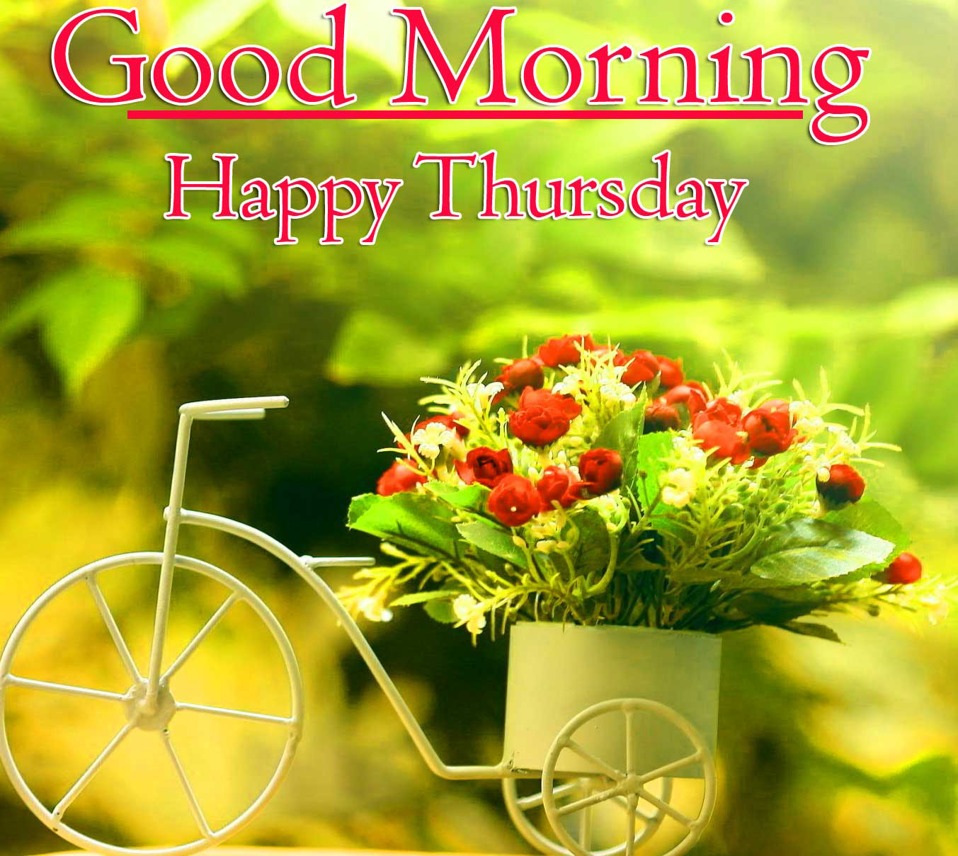 Sweet Flower Good Morning Thursday Images Pics Download