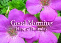 Good Morning Thursday Wallpaper Download 92