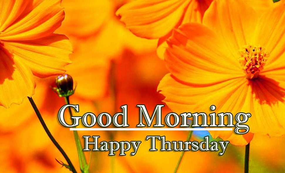 Good Morning Thursday Images Pics Photo Download
