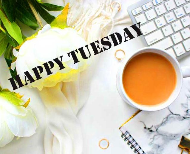 Good Morning Tuesday Wallpaper Download 100