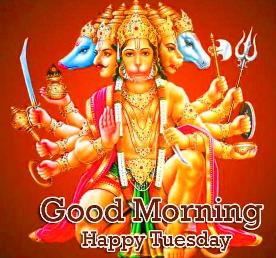 Good Morning Tuesday Hauman JI Images photo Free Download