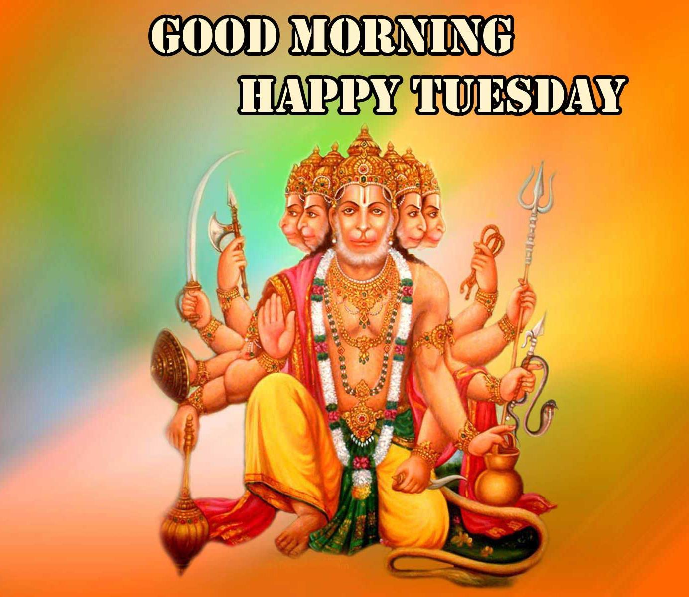 new Best Free Good Morning Tuesday Hauman JI Images Pics Download