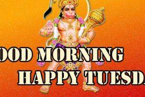 Good Morning Tuesday Wallpaper Download 86
