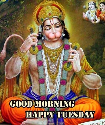 Free New Good Morning Tuesday Hauman JI Images Pics Download