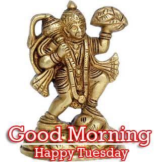Good Morning Tuesday Wallpaper Download 98
