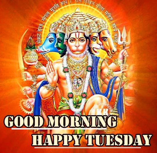 Good Morning Tuesday Wallpaper Download 99