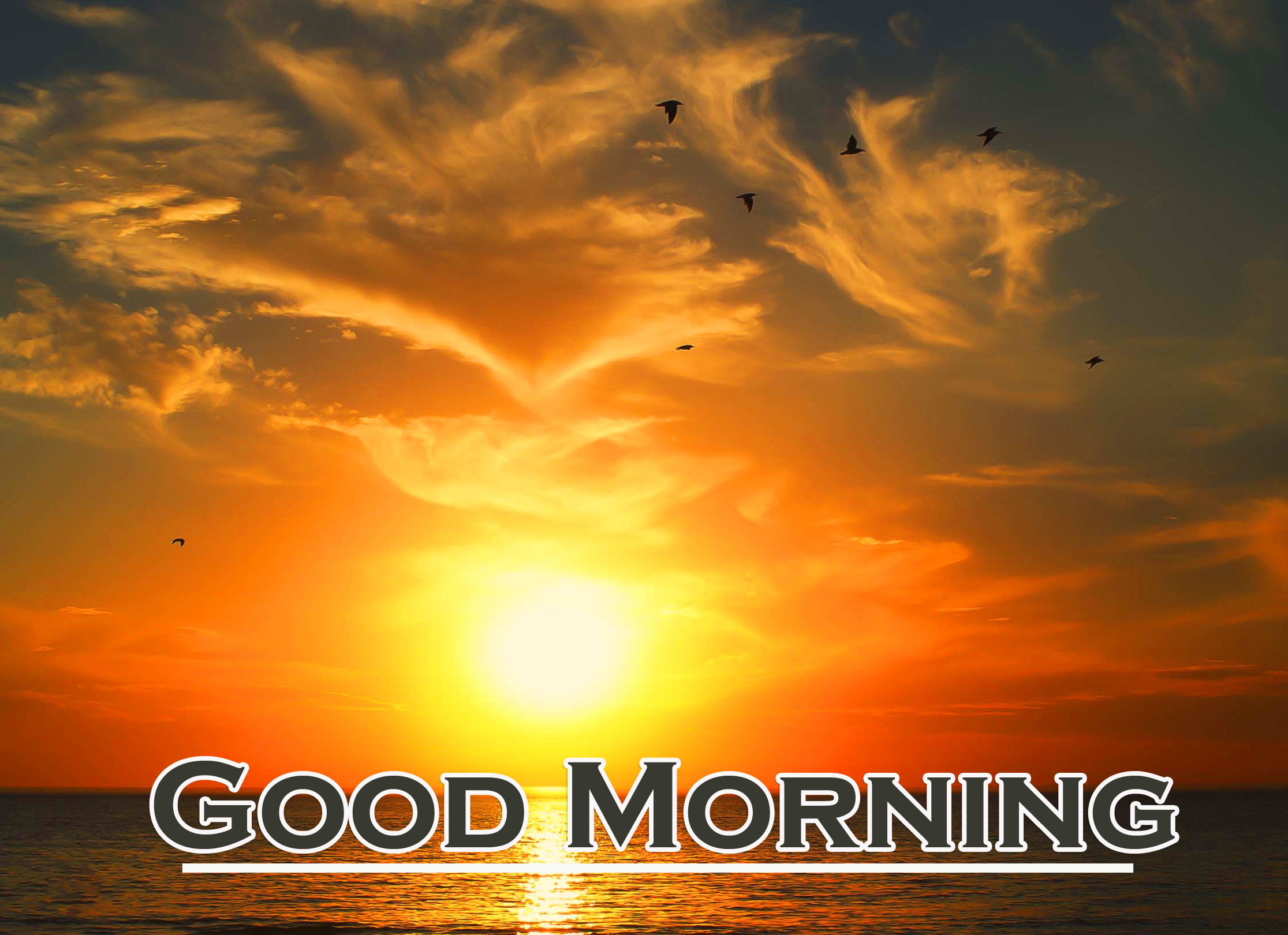 Sunrise FREE Good Morning Wallpaper Pics DOWNLOAD