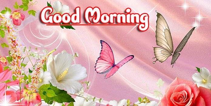 Good Morning Wallpaper pics Free Download HD