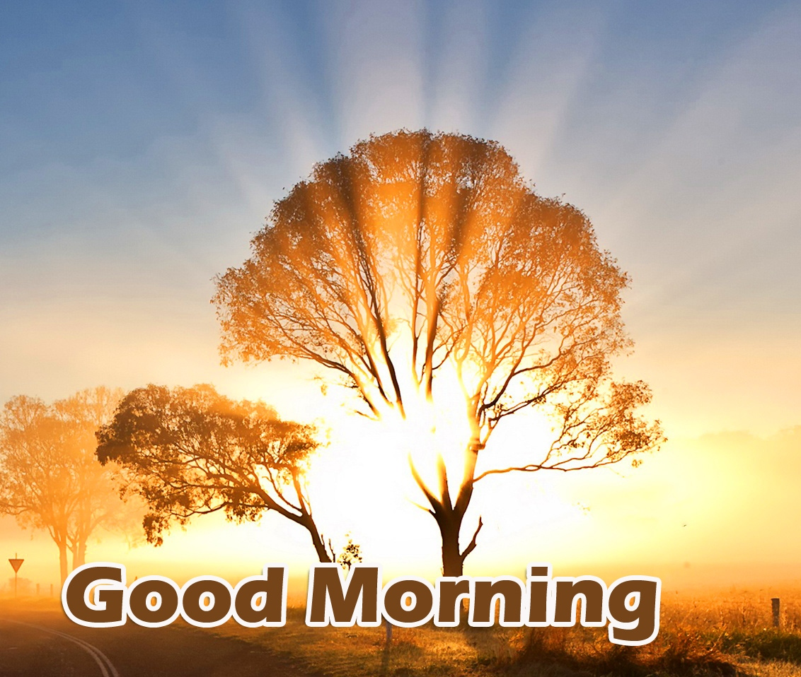 Good Morning Wallpaper Pictures Free Download New