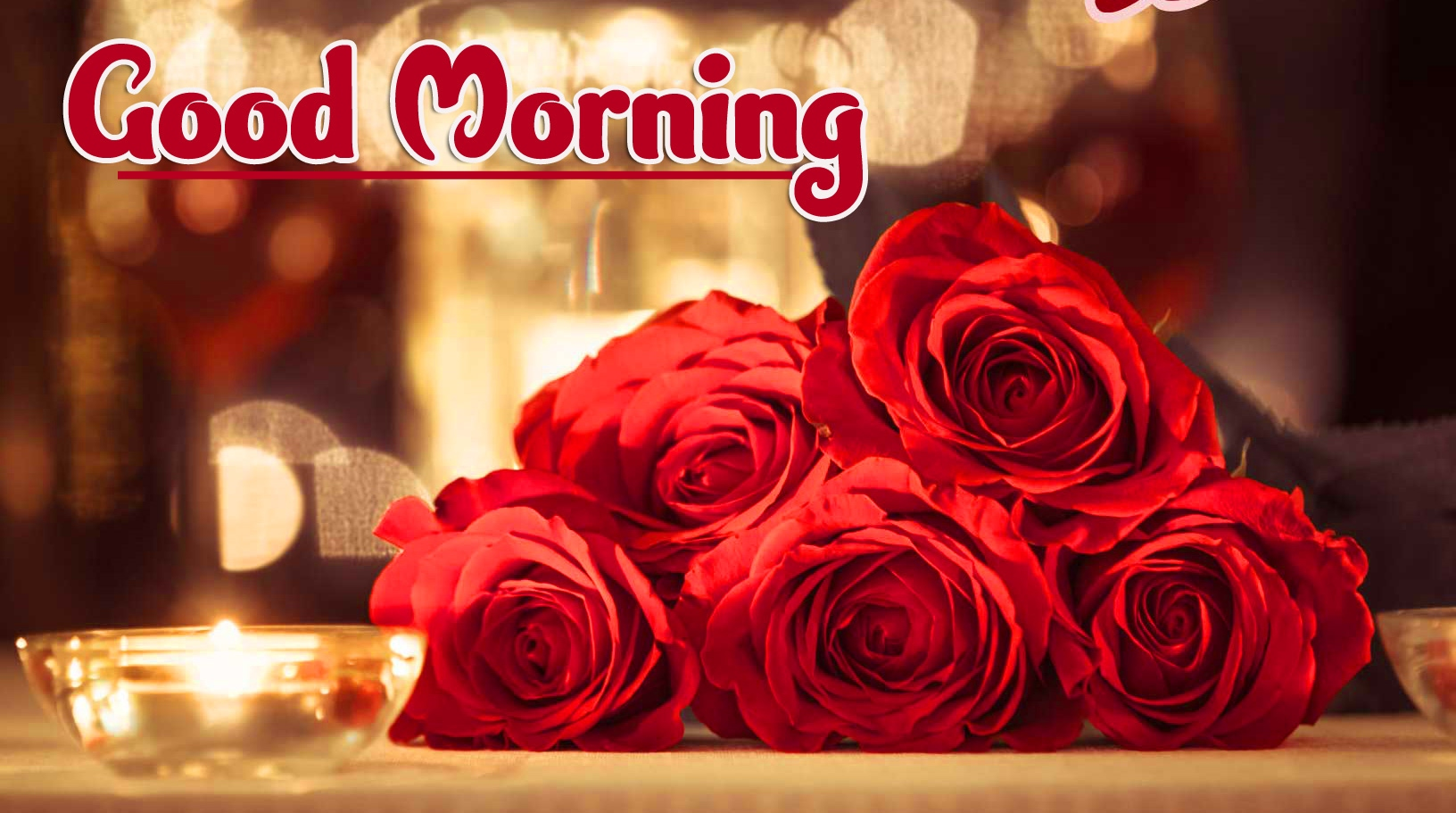 With Red Rose Free Good Morning Wallpaper Pics Download