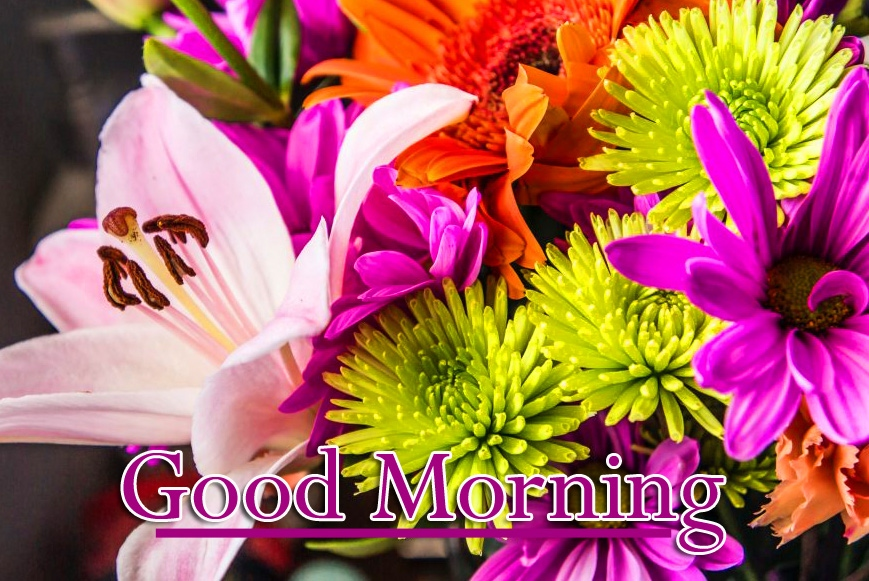 Best free Good Morning Wallpaper Pics Download