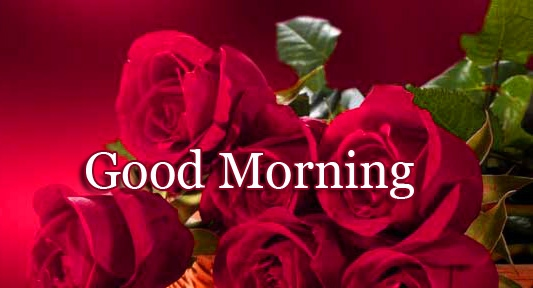 New Free Latest Good Morning Wallpaper Pics Download