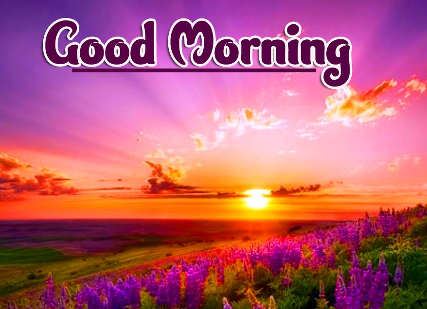 Beautiful Sunrise Good Morning Wallpaper Pic Download