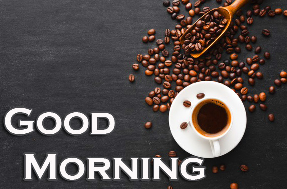 Good Morning Wallpaper Latest Free Download Free