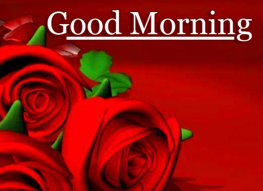 Free Latest Good Morning Wallpaper Pics Download