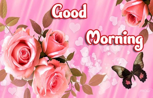 Best Quality Good Morning Wallpaper Pics Download