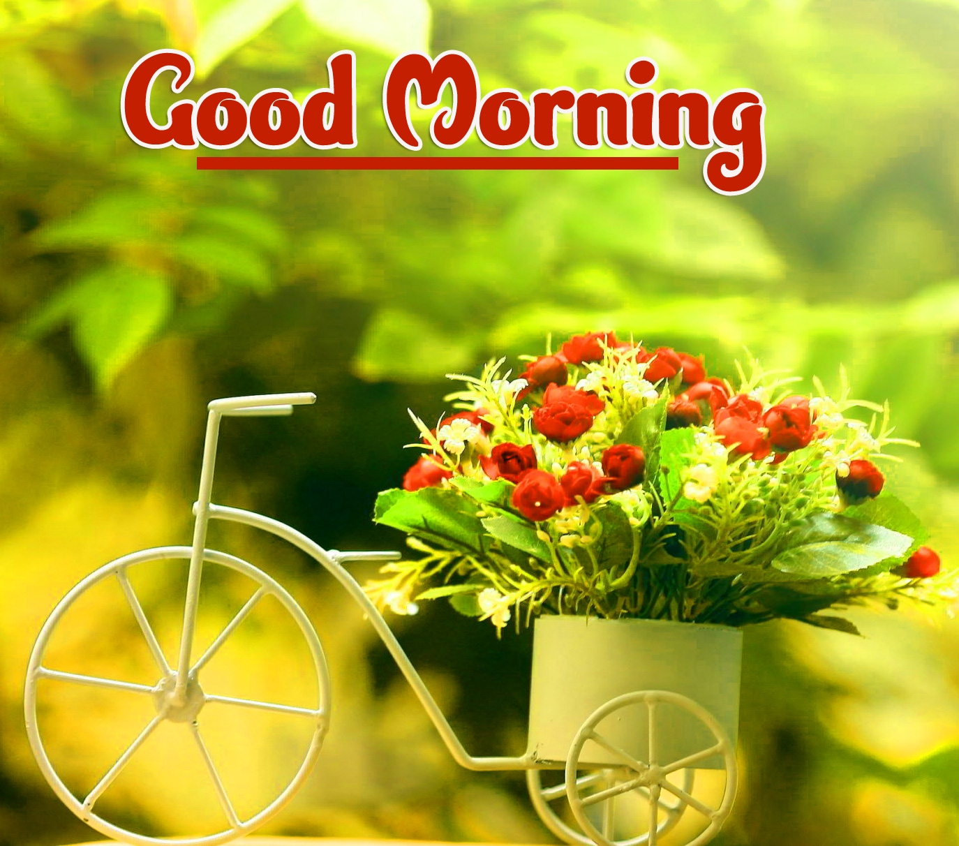 Good Morning Wallpaper Pics Free Latest