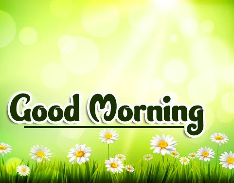 Good Morning Wallpaper Pics Free Latest New