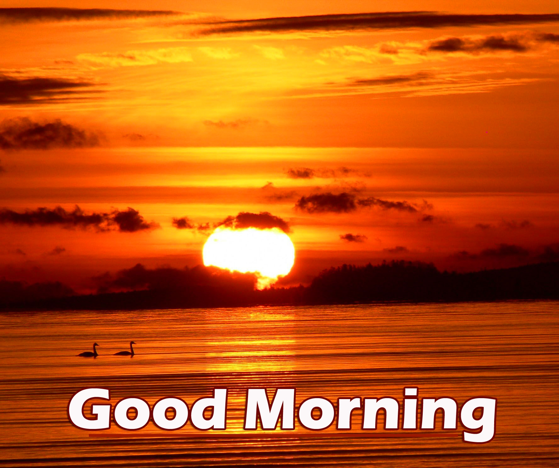 New Latest Good Morning Wallpaper Pics Download