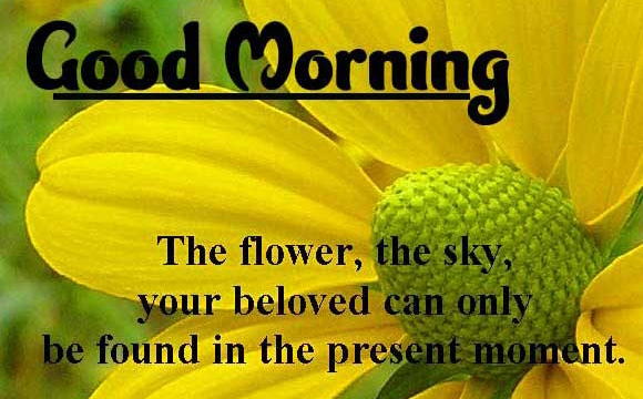 Good Morning Wishes Images with positive thoughts Wallpaper Free New