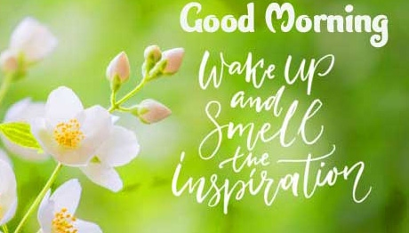 Good Morning Wishes Images with positive thoughts Wallpaper Latest Download