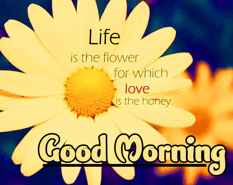 Good Morning Wishes Images with positive thoughts Wallpaper Pics DOWNWARD
