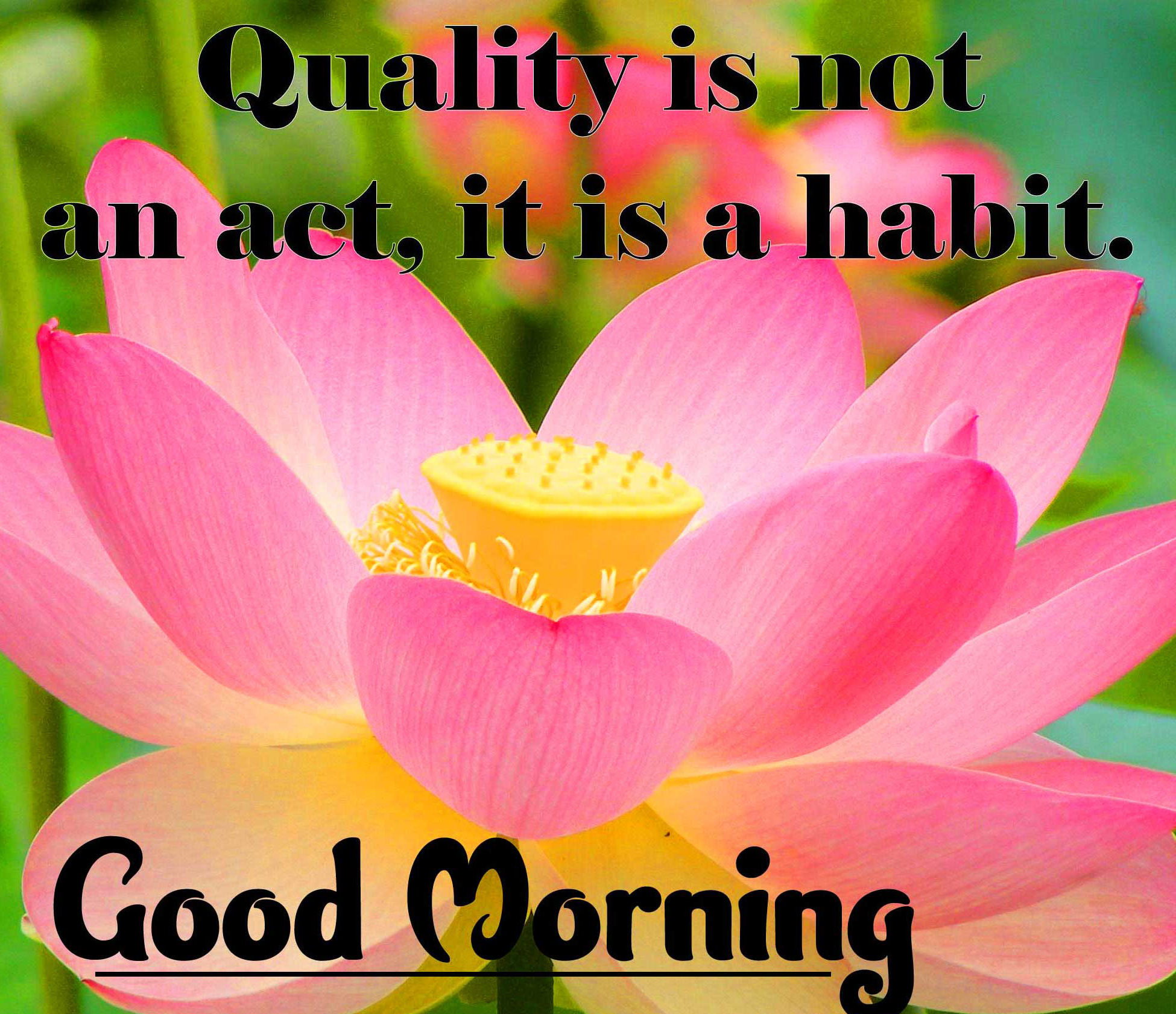 Good Morning Wishes Images with positive thoughts Pics Free Latest