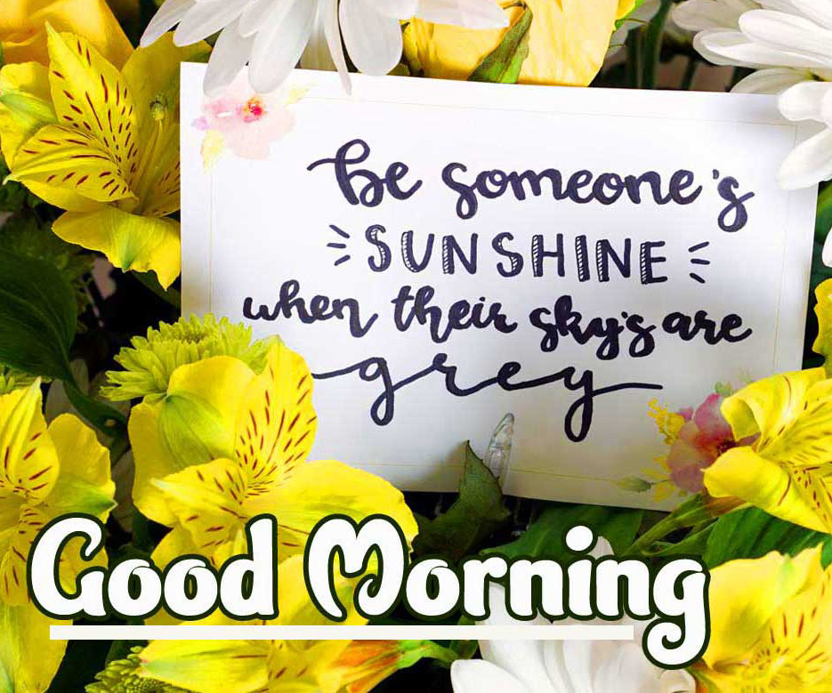 With Flower Good Morning Wishes Images with positive thoughts Pics Wallpaper Download