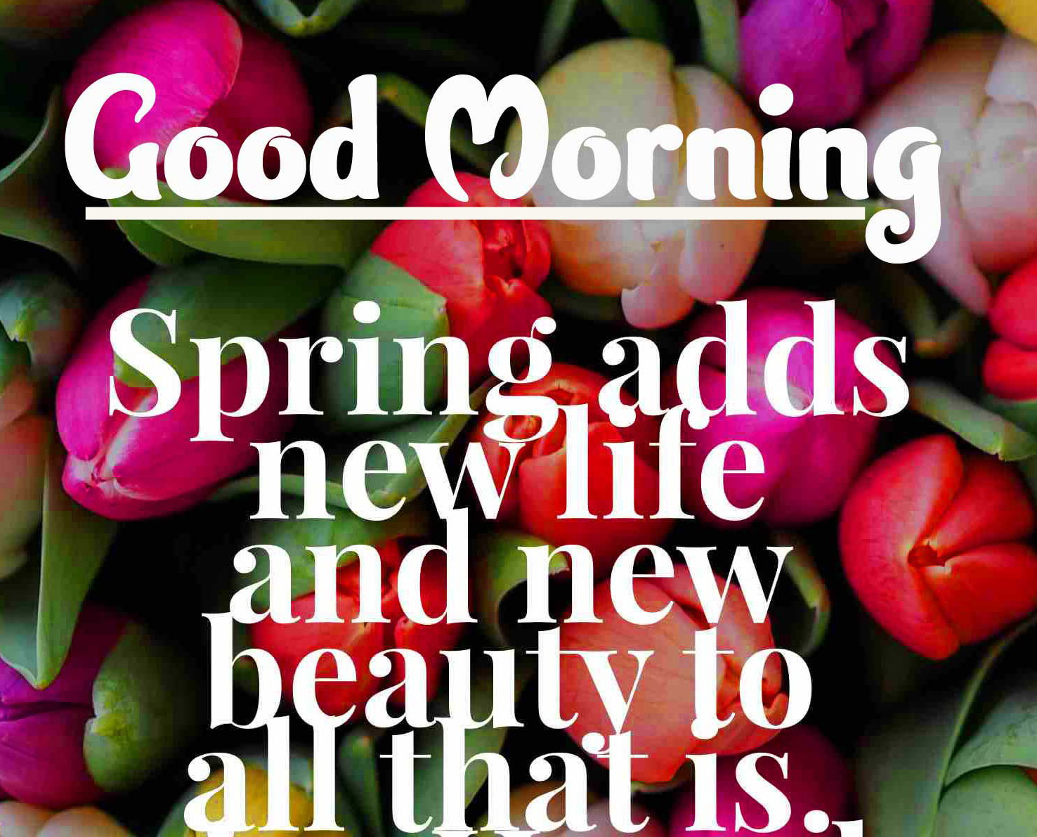 Good Morning Wishes Images with positive thoughts pics DOWNLOAD