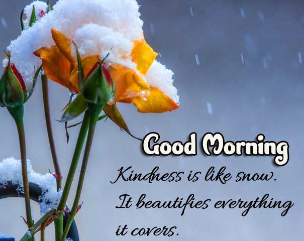Good Morning Wishes Images with positive thoughts Wallpaper free Download