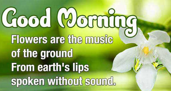 Good Morning Wishes Images with positive thoughts Wallpaper Free