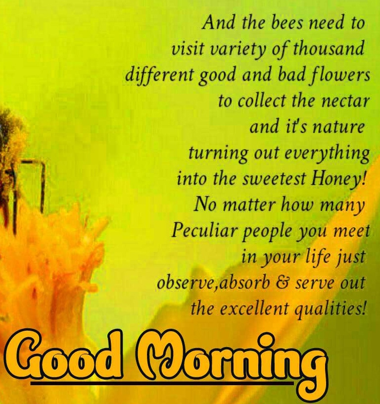 for Friend free Good Morning Wishes Images with positive thoughts Pics Download