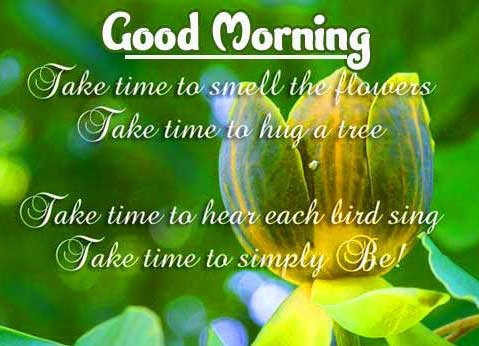 Beautiful Free Good Morning positive thoughts Wallpaper Pics Free Download