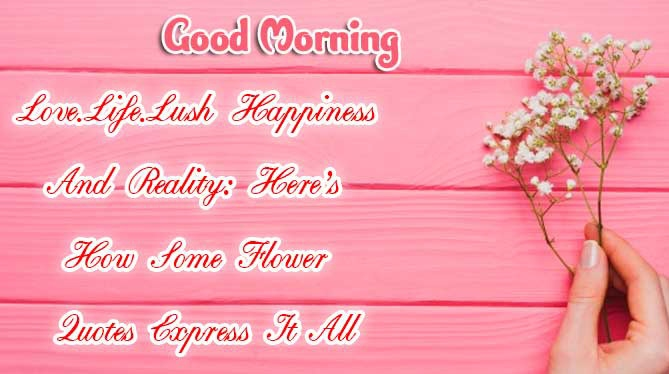 Beautiful Free Good Morning positive thoughts Wallpaper photo free download