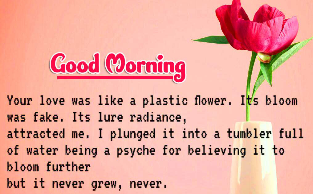 Good Morning Images Free for facebook