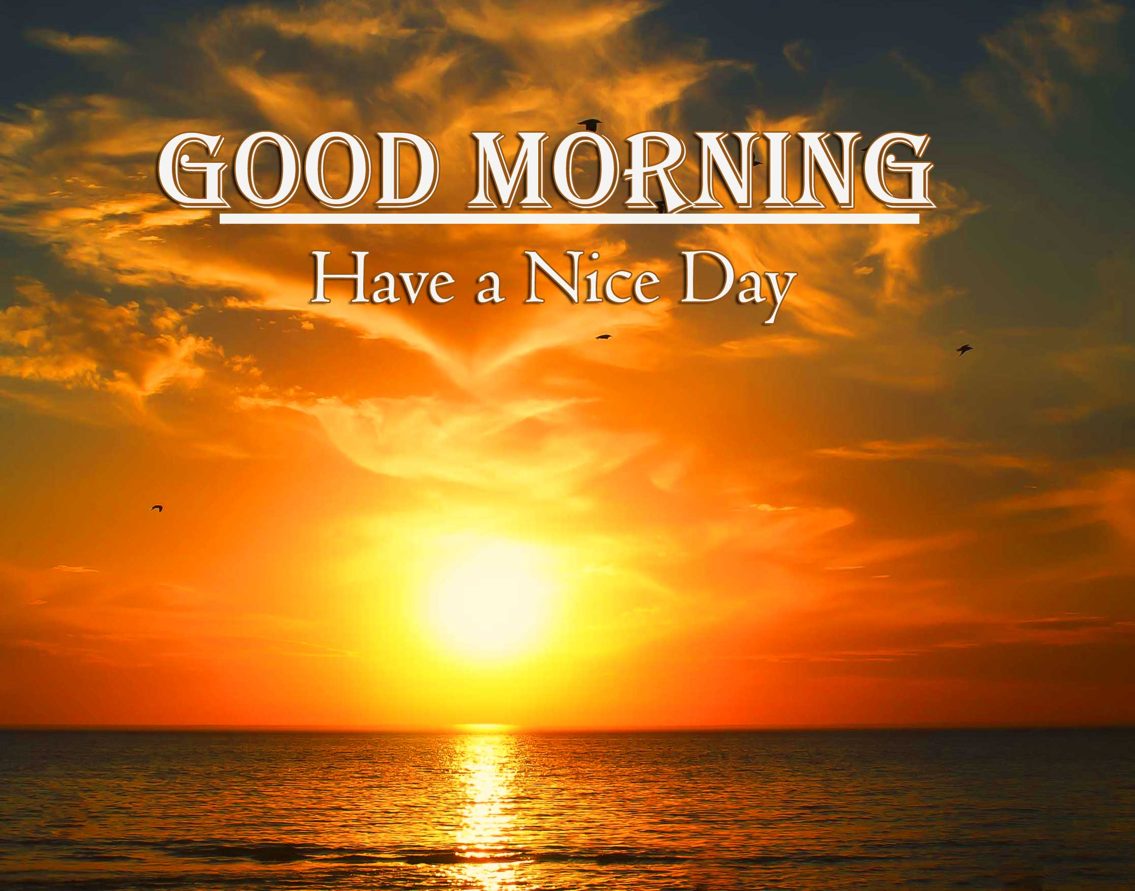 Good Morning Wishes With Sunrise Pics Free Download Latest