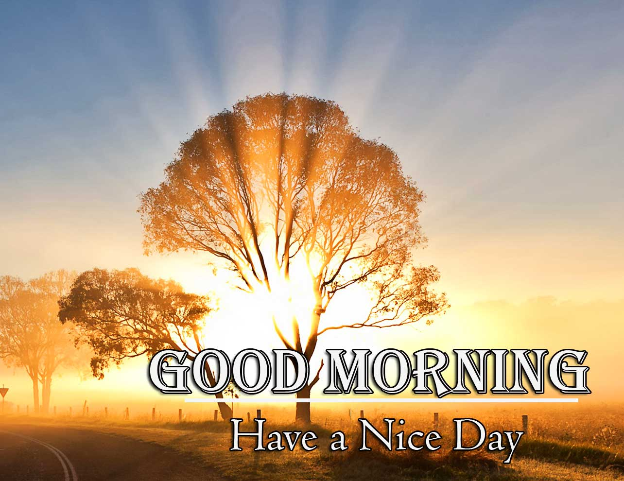 Good Morning Wishes With Sunrise New Latest Download