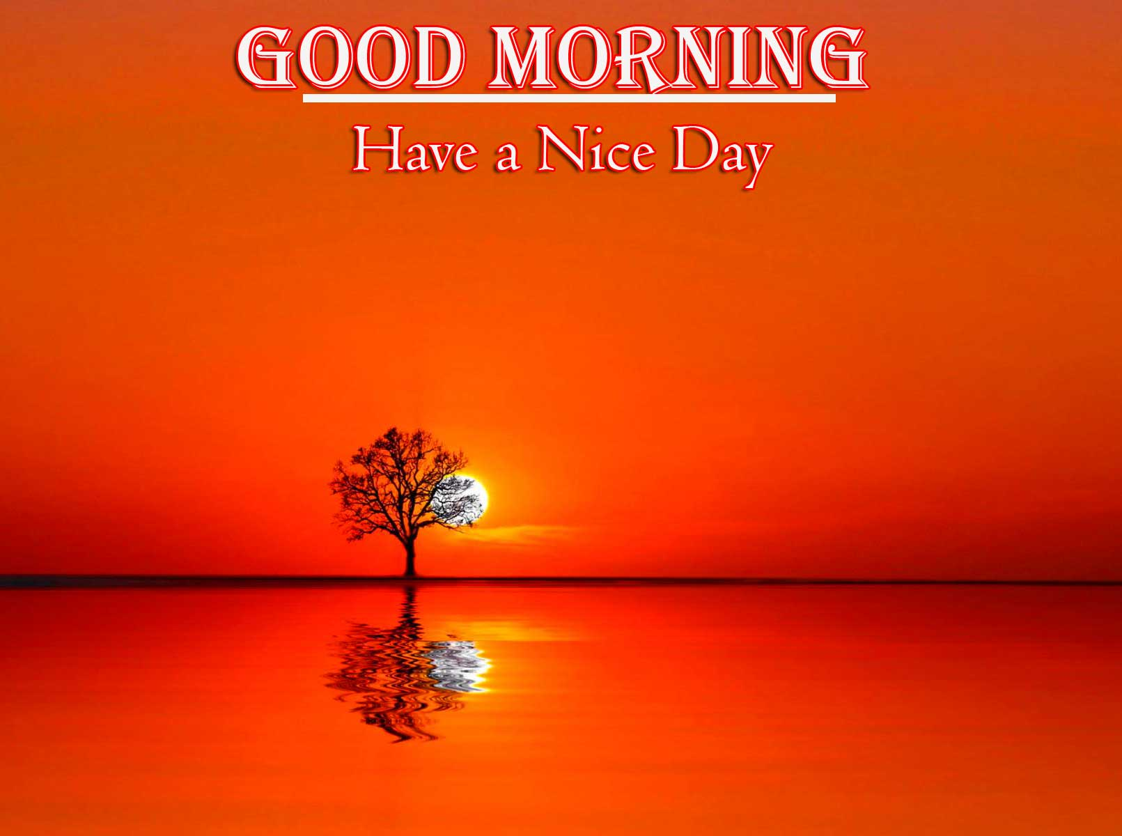 Good Morning Wishes With Sunrise pics Download Free