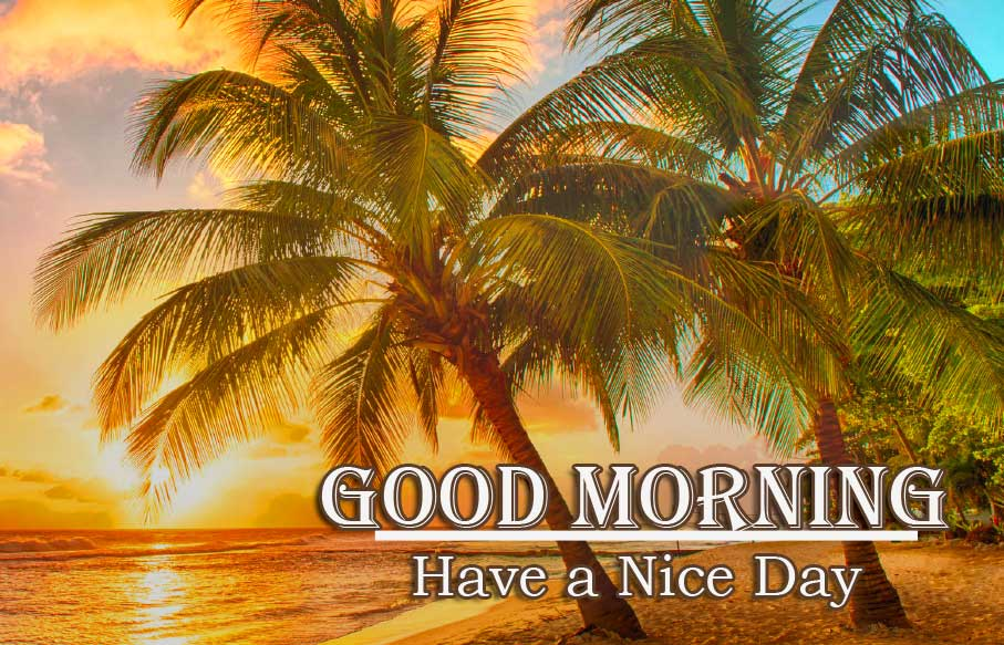 Good Morning Wishes With Sunrise Pics Free Download