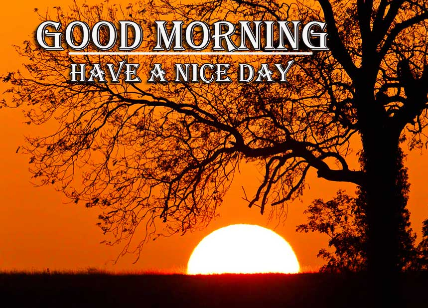 Latest Free Good Morning Wishes With Sunrise Pics Images Download