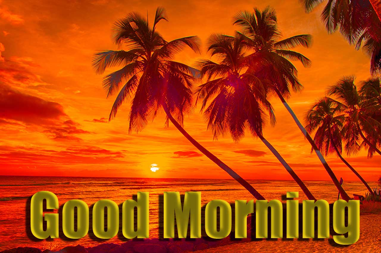 Beautiful Free Good Morning Wishes With Sunrise Photo for Facebook