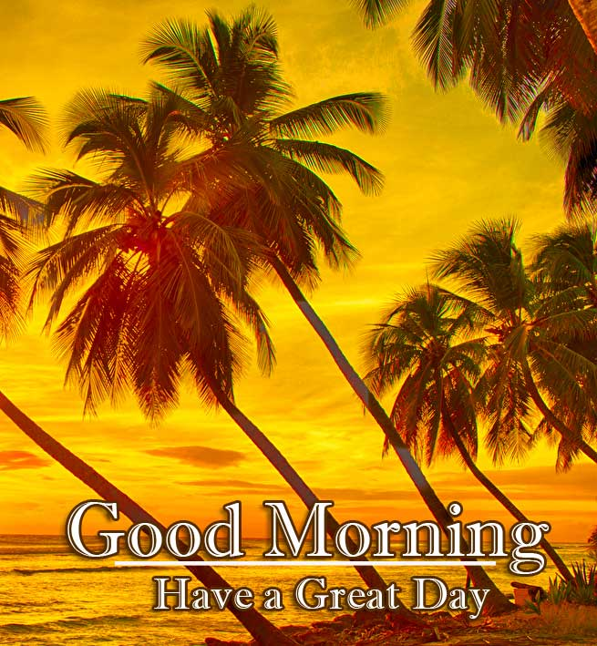 New Best Free Beautiful Free Good Morning Wishes With Sunrise Pics Download